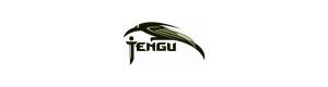 Видеообзоры:  Tengu