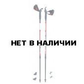 Телескопические палки для скандинавской ходьбы Masters Telescopic 01N0915