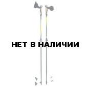 Телескопические палки для скандинавской ходьбы Masters Training Speed 01N0415