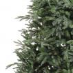 Ель Royal Christmas Delaware Premium 177180 (180 см)