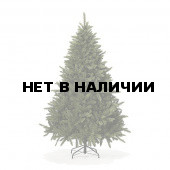 Ель Royal Christmas Washington Promo 98120 (120 см)