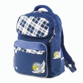Рюкзак для мальчиков Brauberg Орел с пеналом 18 л 227853