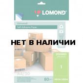 Этикетка самоклеящаяся Lomond 210х297 мм 50 листов по 1 шт зеленая 2020005