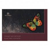 Папка для пастели А3 Palazzo Бабочка склейка 20 листов, 200 г/м2, 4 цвета ПБ/А3