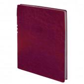 Тетрадь с ручкой А4 Brauberg Nebraska 96 листов клетка 110960