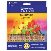 Карандаши цветные трехгранные Brauberg Цветы 24 цвета 181368