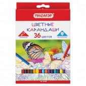 Карандаши цветные Пифагор Бабочки 36 цветов 181354