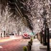 Уличная светодиодная гирлянда (холодный свет) Vegas Нить 48 LED, 5 м, 24V 55001