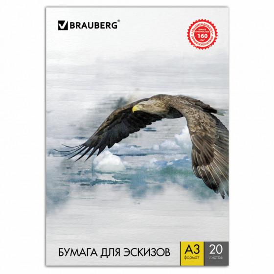 Папка для рисования А3 Brauberg Орел 20 листов, 160 г/м2 125228
