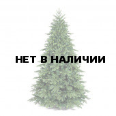 Ель Royal Christmas Nordland 982210 (210 см)