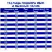 Лыжные палки 120 см (г. Бийск)