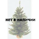 Сосна Триумф Сказочная в мешочке 73538 (90 см)