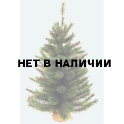 Сосна Триумф Сказочная в мешочке 73537 (60 см)