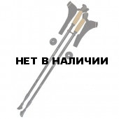 Палки для скандинавской ходьбы JF2005-L49