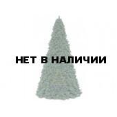 Ель высотная Royal Christmas Giant Trees (370 см)