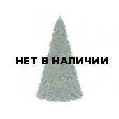 Ель высотная Royal Christmas Giant Trees (440 см)
