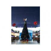 Ель высотная Royal Christmas Giant Trees (580 см)