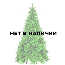 Сосна Триумф Санкт-Петербург 73540 (230 см)
