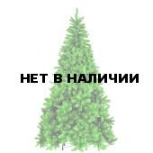 Сосна Триумф Санкт-Петербург 73539 (215 см)