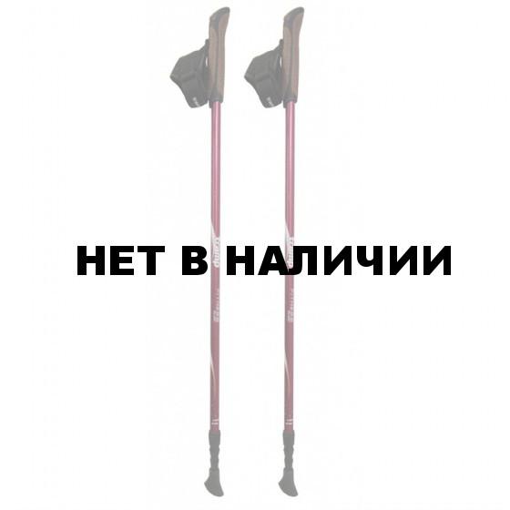 Палки Tramp для скандинавской ходьбы Fitness TRR-011