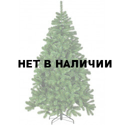 Сосна Триумф Рождественская 73243 (155 см)