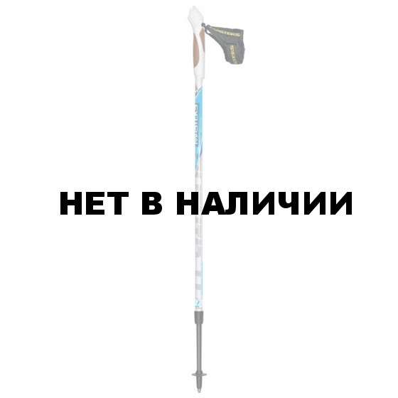 Телескопические палки для скандинавской ходьбы Masters Training 01N0614
