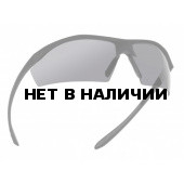 Очки Bolle SENTINEL (SENTIPSF) smoke lens