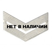 Знак различия ВС младший сержант повседневный металл