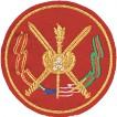 Нашивка на рукав ВС РФ Военный институт вышивка шелк