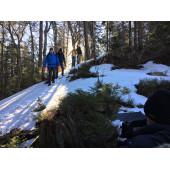 Водонепроницаемые носки DexShell Trekking Green S (36-38)