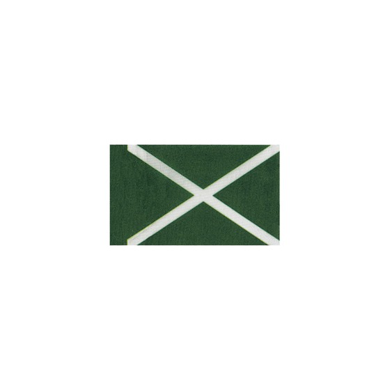 Флаг Таможня