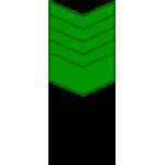 Нашивка на рукав годичка - 9 лет (оливка на оливке) вышивка шелк