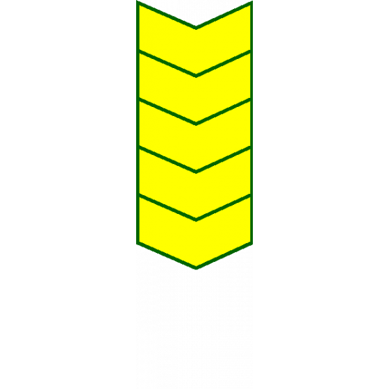 Нашивка на рукав годичка - 25 лет (жёлтый на оливке) вышивка шелк