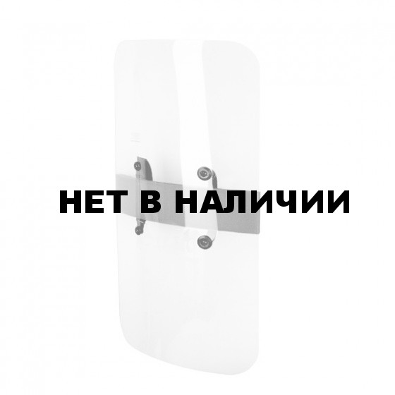 Щит противоударный БС-3 (Paulson )