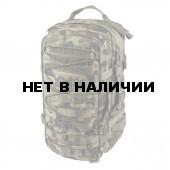 Рюкзак Helikon-Tex RACCOON Backpack PL woodland
