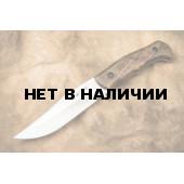 Нож Kizlyar Supreme Caspian AUS-8 Satin Walnut с фиксированным клинком