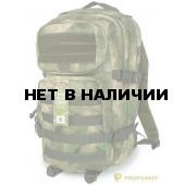 Рюкзак ProfArmy Assault FG 30 л