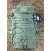 Рюкзак Tactical PRO Racoon II 25л 600 Den олива