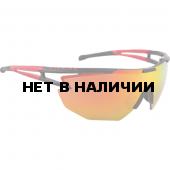 Очки солнцезащитные Alpina 2018 ALPINA EYE-5 SHIELD CM+ black-red