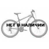 Велосипед FOCUS RAVEN ROOKIE 24 2016 BLACKMATT