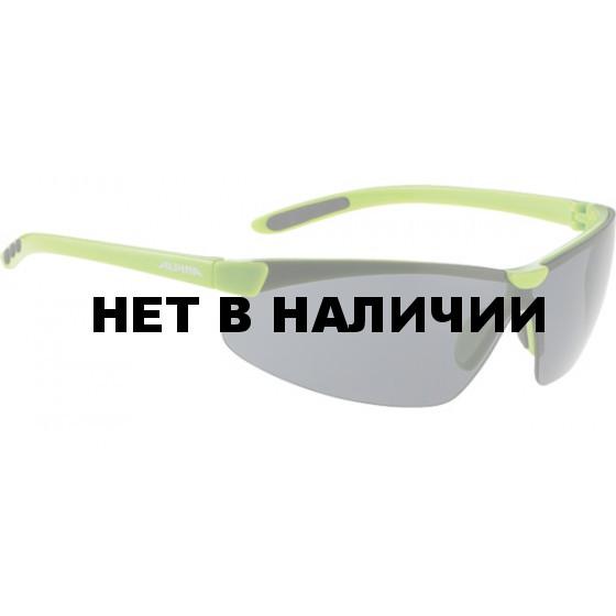 Очки солнцезащитные ALPINA DRIFT green