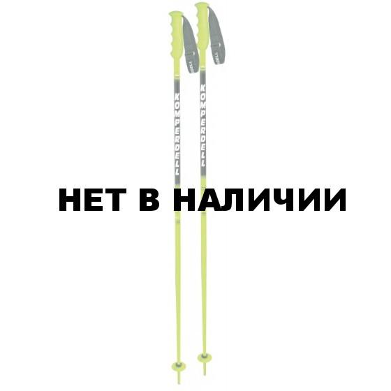 Горнолыжные палки KOMPERDELL 2014-15 Racing Nationalteam F200+ Race