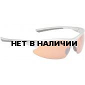 Очки солнцезащитные ALPINA DRIBS 2.0 silver