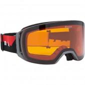 Очки горнолыжные Alpina ARRIS DH anthracite_DH S2