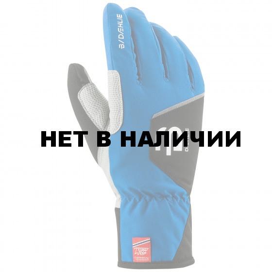 Перчатки беговые Bjorn Daehlie 2016-17 Glove TRACK JR Olympian Blue