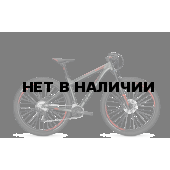 Велосипед FOCUS WHISTLER SL 2018 irongreymatt
