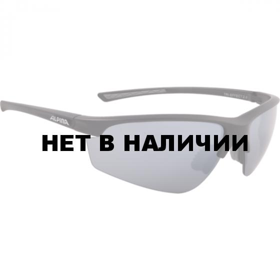 Очки солнцезащитные Alpina 2018 TRI-EFFECT 2.0 black mat