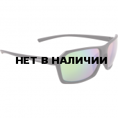 Очки солнцезащитные Alpina 2018 FINETY P black-black matt