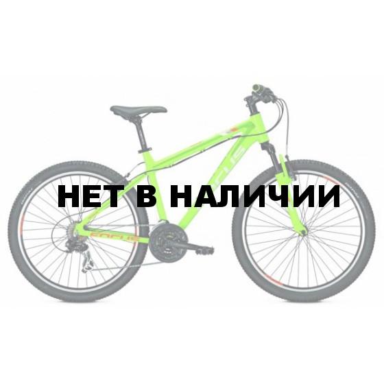 Велосипед FOCUS RAVEN ROOKIE 1.0 24R 2017 GREEN