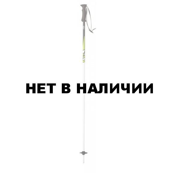 Горнолыжные палки Elan 2015-16 SP MAXX GREEN